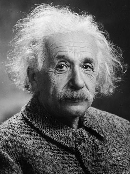 Quotes Analysis: Albert Einstein Fish Quote