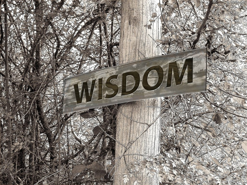 Intelligence vs Wisdom : What is the difference?