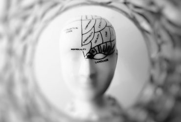 How To Effectively Develop The 4 Brain Quadrants